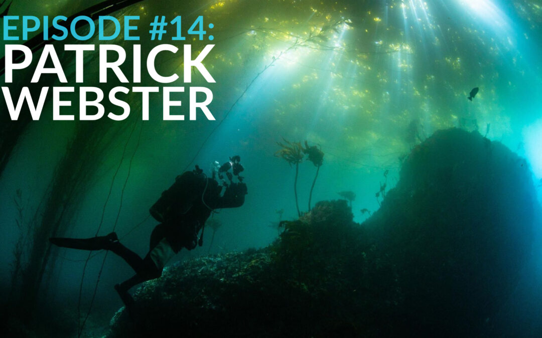 "Patrick Webster (aka ""underwaterpat"") – Viral Videos, Photography Competitions, Environmentalism"